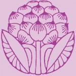 Logo IUMA